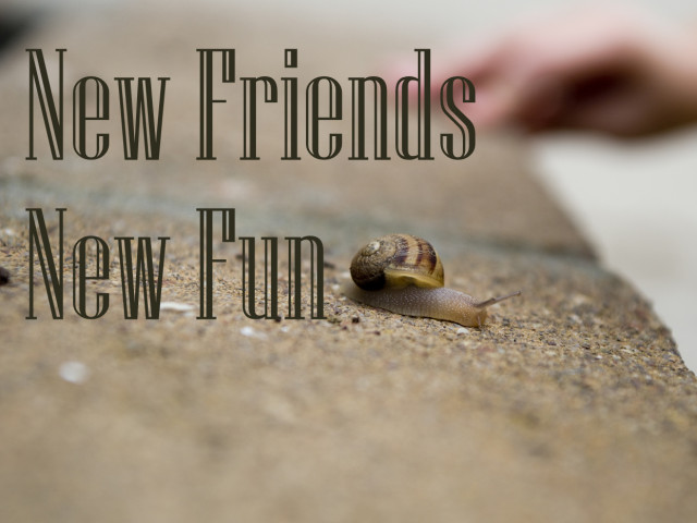 New Friends New Fun