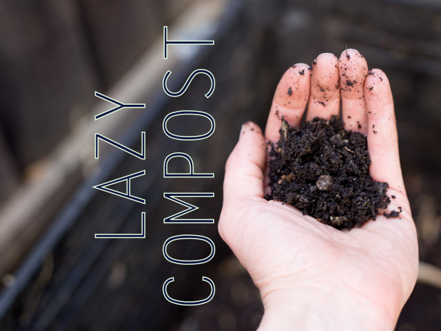Lazy Composting: how to make your trash disappear