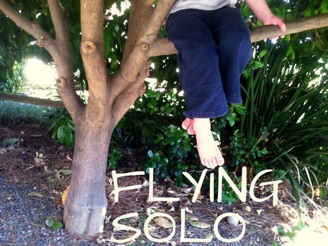 Flying Solo: getting by while daddy's traveling