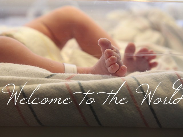Welcome to the World, Little Leslie
